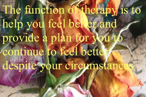 the function of therapy