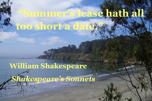 summer sonnet