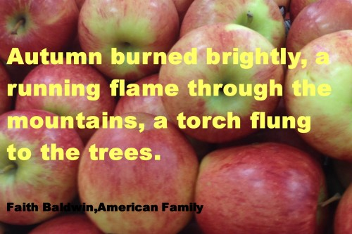 autumn burned brightly