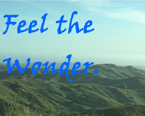 feel the wonder