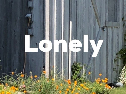 lonely 2