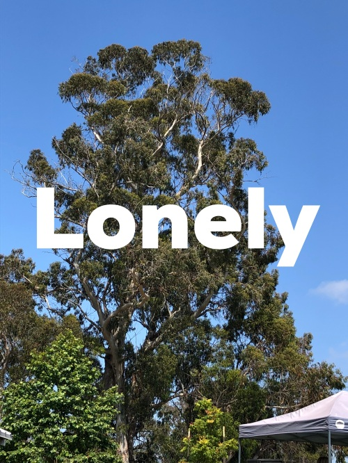 lonely1